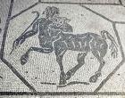 Mozaik na tleh okrog hiše